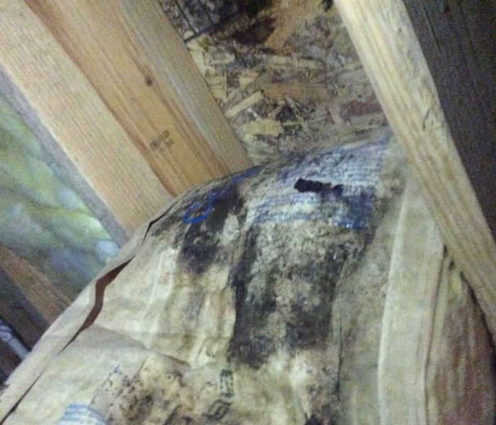 Water Heater Leaks into Crawlspace