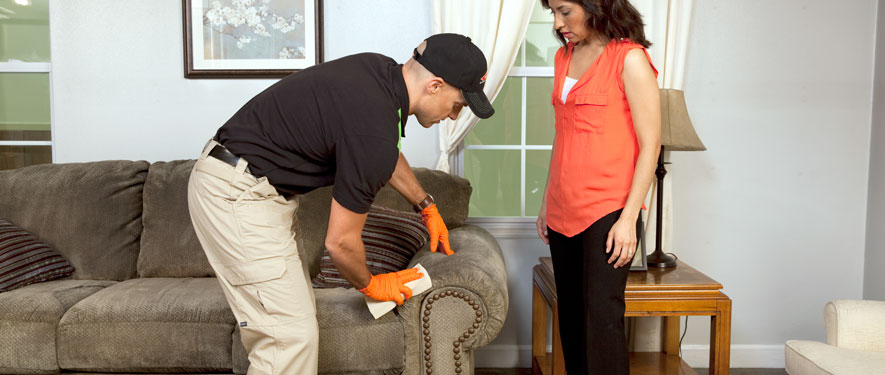 Hampton, VA carpet upholstery cleaning